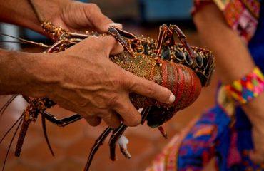 12-Galapagos-Community-Experience-7-Days