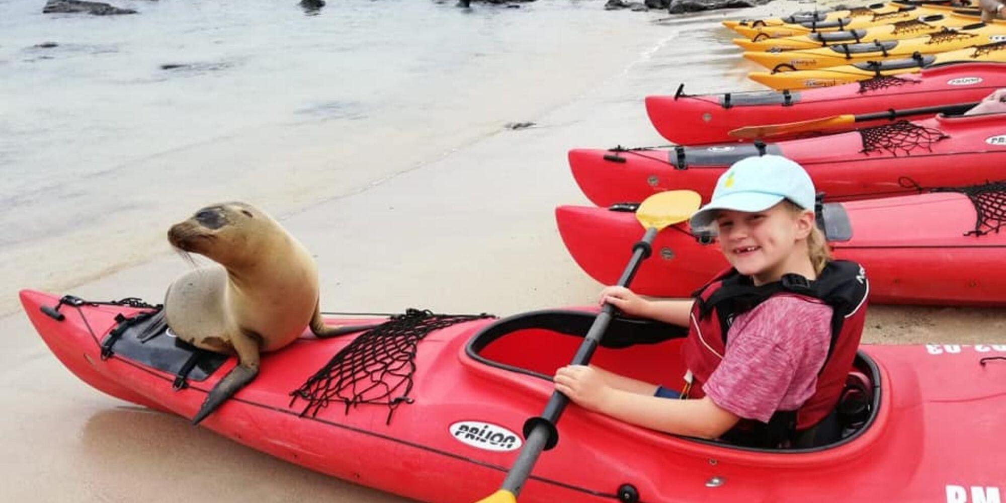 sea lion sitting on kayak in Galapagos Islands