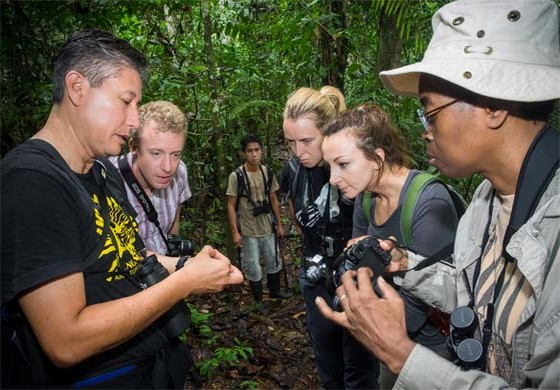 Amazon Rainforst Hike with Interpretation.