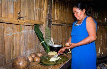 6-Lower-Amazon-Exploration-4-Days
