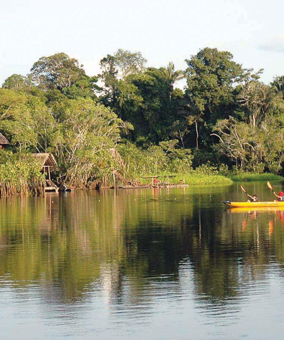 Amazon-Kayak-Wildlife-Exploration-4