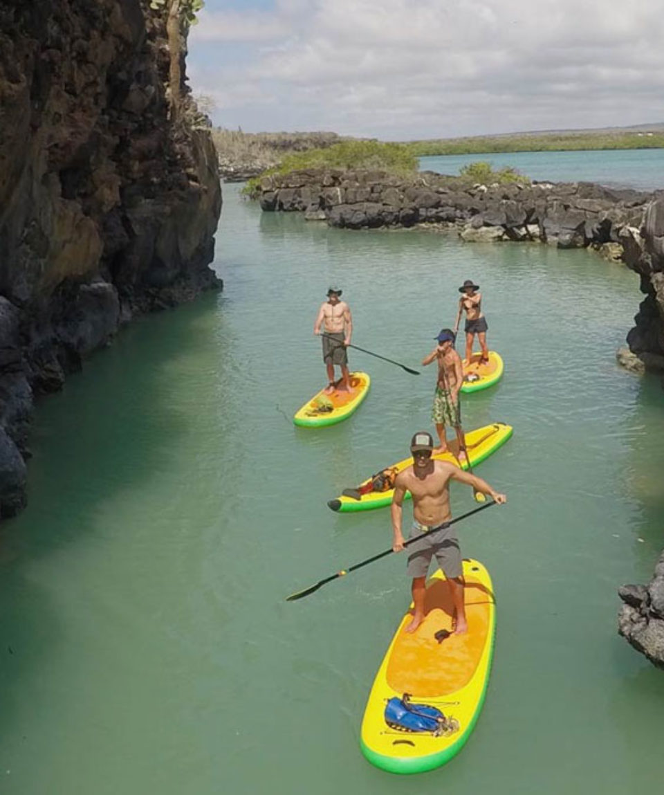 Galapagos-Stand-Up-Paddle