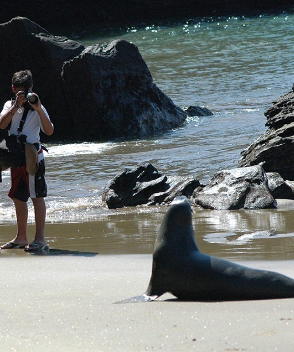Galapagos Wildlife Discovery Premium 5 Days