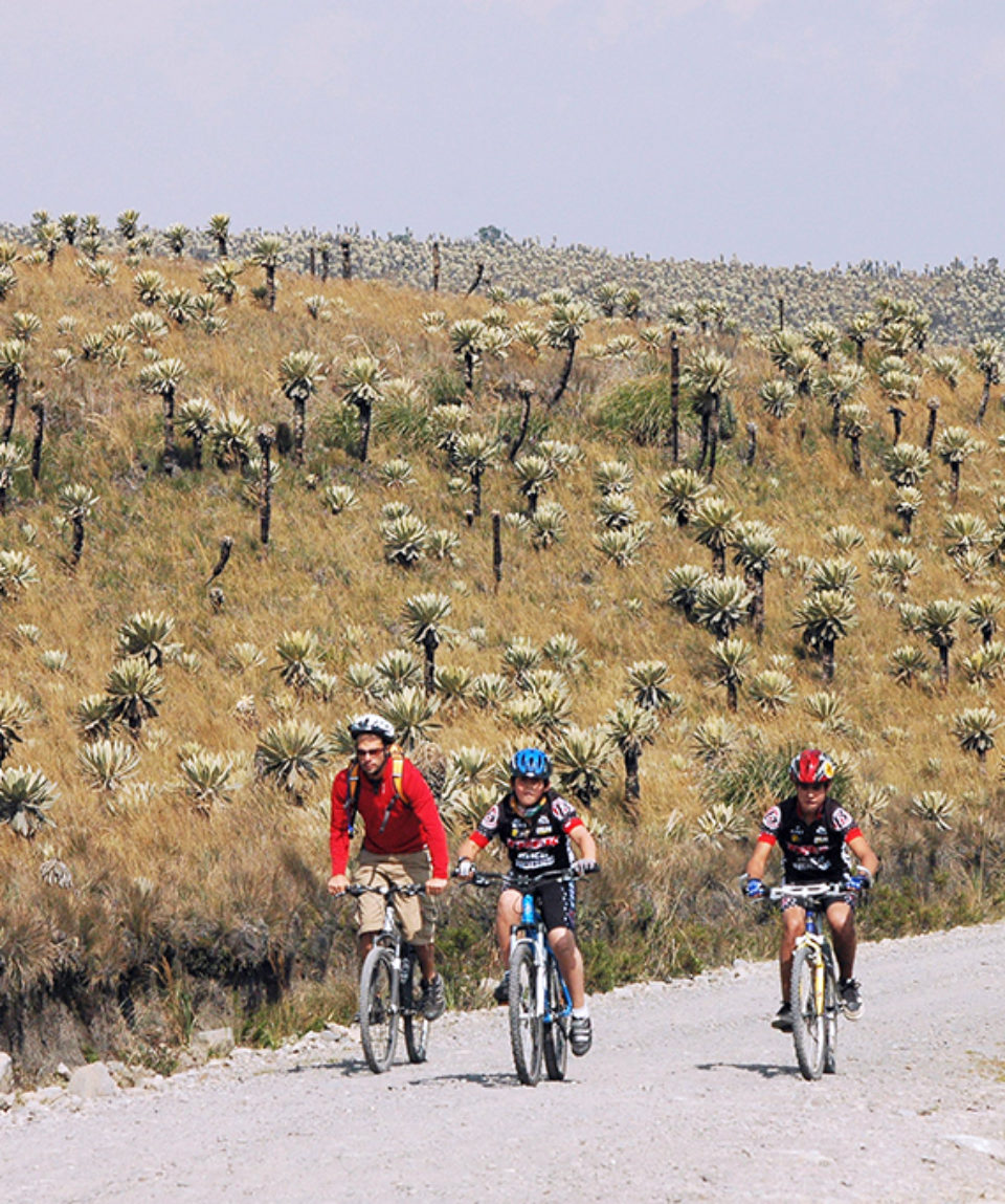 Land of the Imbayas Biking Adventure 5 Days